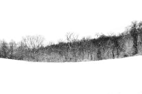 Snow Path #3