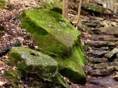 Old Millstone #1