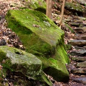 Old Millstone #1